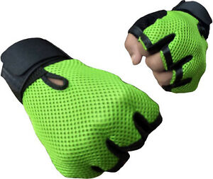 Cp Bigbasket Netted Wrist Support Gym & Fitness Gloves (Green) Free Size