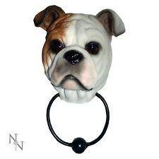 Inglese Britannico Bulldog Battente Per La Porta Banger Amanti Dei Cani Quirky