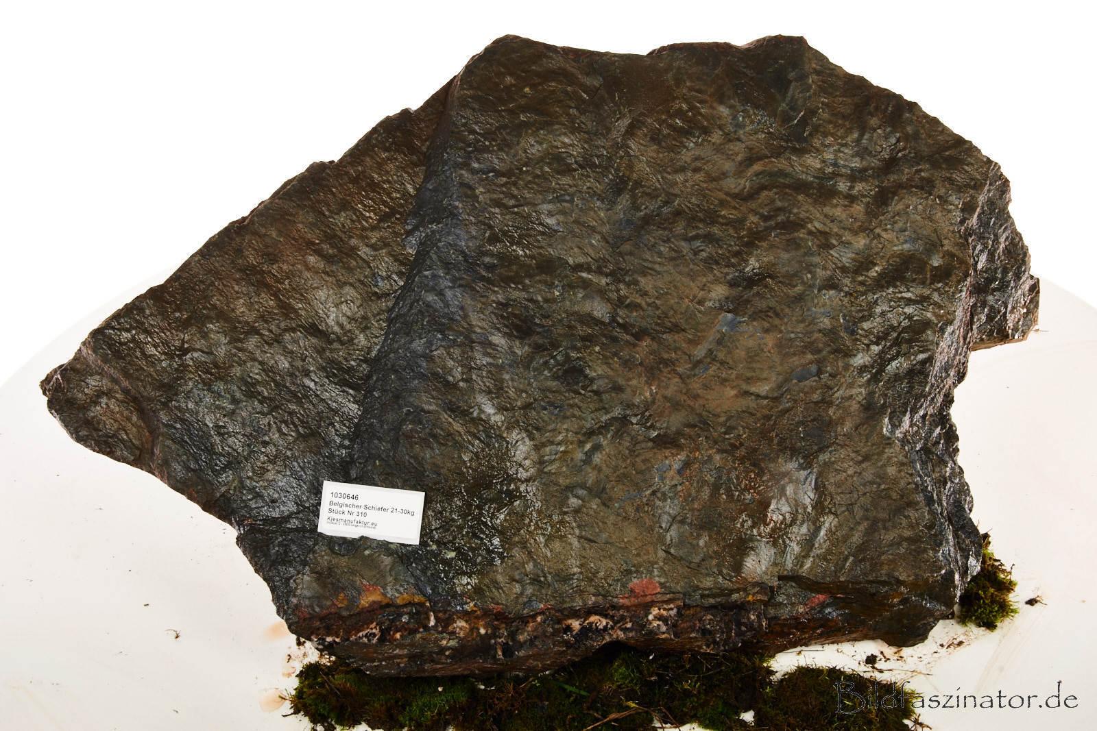 Belgischer S efer Stk310- 29kg- 69x45cm, Aquariumdeko, inkl 9kg Aquariumkies