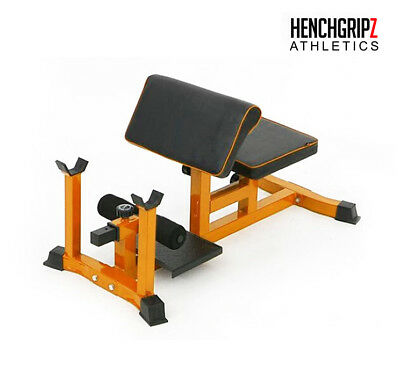Henchgripz commerciale Sissy Squat Bench//Machine//Preacher Curl//Crunch Noir