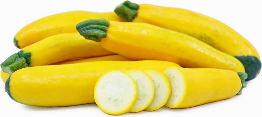 (284) 'KINGS' QUALITY courgette gold rush f1 - seeds- Vegetable