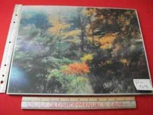 VINTAGE-1950-039-s-COLLECTIBLE-LENTOGRAPH-VICTOR-ANDERSON-PLATE-101-FOREST-FANTASY