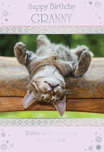 Granny Cat Design Happy Birthday Quality Card Lovely Verse