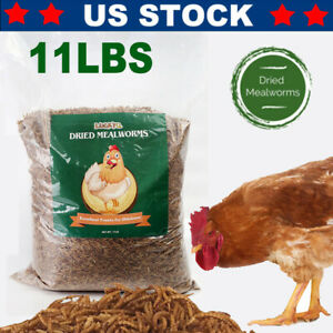 Dried-Mealworms-Bulk-11-LBS-for-chickens-Birds-Bluebirds-Hamsters-Hen-Meal-Worms