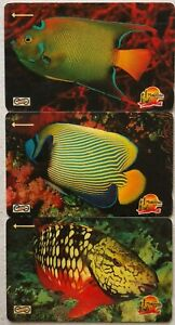 Malaysia-Used-Phone-Cards-3-pcs-Tropical-Fish