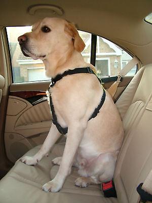 Kumfi Dog Walking & Car Seatbelt Safety Harness + Seat Belt Loop - Large