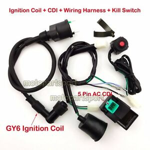 wiring harness kill switch ignition coil cdi for 50 160cc pit bike rh ebay com pit bike 5 pin cdi wiring diagram Coolster Pit Bike