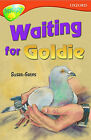 Oxford Reading Tree: Stage 13: Treetops: Waiting for Goldie: Waiting for Goldie by Susan P. Gates (Paperback, 1996)