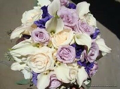 20+ LISIANTHUS LAVENDER AND WHITE FLOWER SEEDS MIX  / LONG LASTING ANNUAL