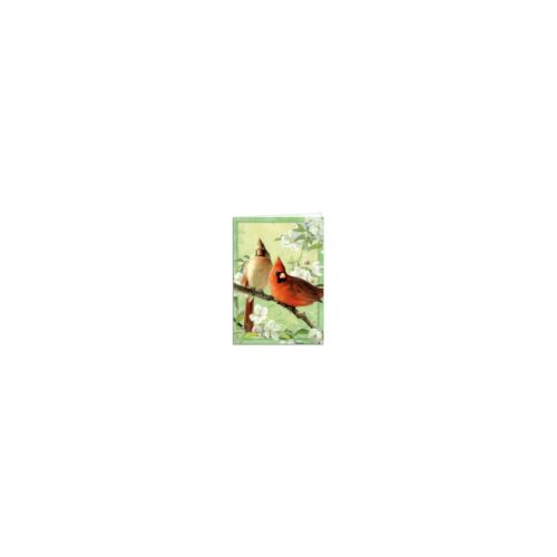 Joseph Hautman Orchid Cardinal All Occasions Greeting Card /& Envelope Tree Free