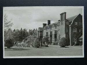 Hampshire-NEW-FOREST-Greetings-from-AVON-TYRREL-c1950s-RP-Postcard-by-Coleman
