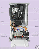 Corgi Gas Boiler Service Repair Manuals Central Heating Plumbing Guides DVD