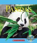 Pandas by Jennifer Zeiger (Hardback, 2012)