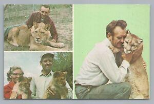 Man Hugging Cougar—Behn Game Farm—Aniwa WI Rare Vintage Lion Cute—Shawano 1950s