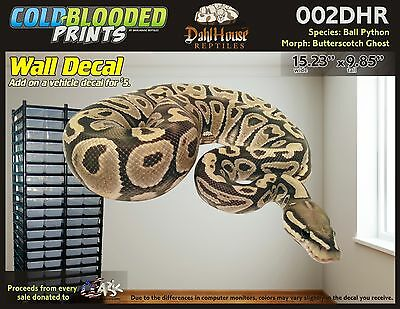 Extraíbles pared calcomanía Serpiente Bola Python de sangre fría Imprime Etiqueta 010renr