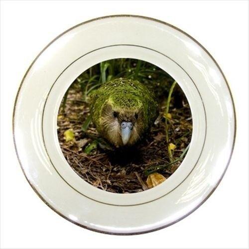 Kakapo Bird Porcelain Plate w// Display Stand