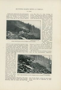 1900-Camera-Hunting-Goats-Lillooet-British-Columbia-Fraser-River-Canada