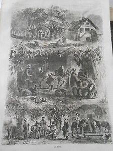 Gravure-1860-Le-Cidre-Ceuillette-fabrication