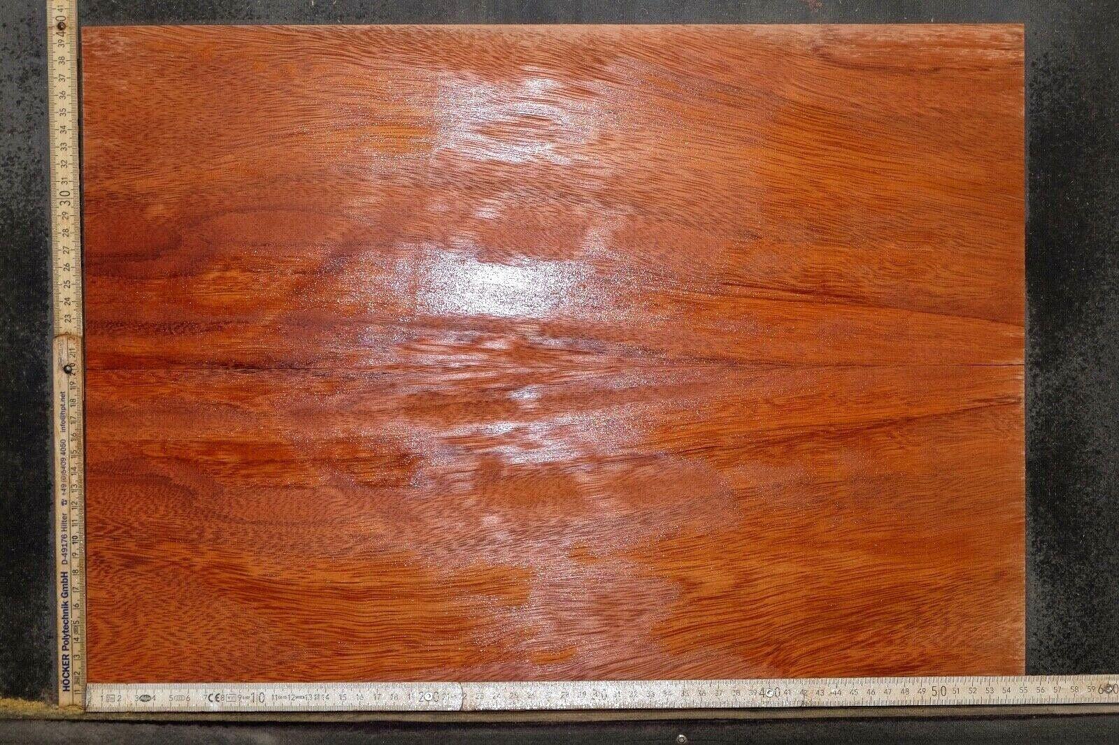 Tonewood Ebiara Berlinia Topset Figurot Tonholz Guitar Builder Droptop Set 005