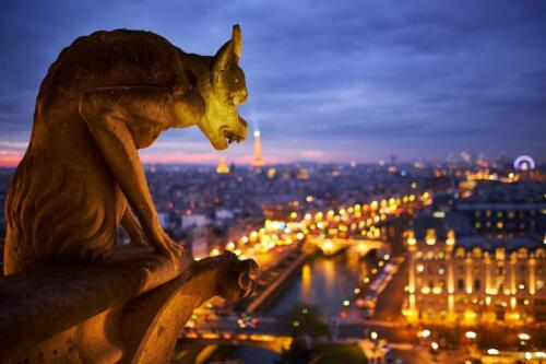 Laminated Notre Dame Cathedral Gargoyle Paris at Night Photo Art Print Sign Post