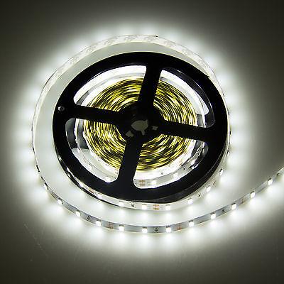 3528 5050 5630 5M White 300 SMD 12V LED Flexible Strip Light Waterproof +Adapter