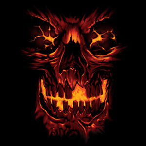 Skull Skeleton Flames Burning Fire Cool TShirt Tee  eBay