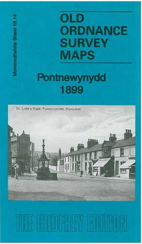 OLD ORDNANCE SURVEY MAP PONTNEWYNYDD 1899 PLAS-Y-COED CWM-NANT-DDU WAUNFELIN