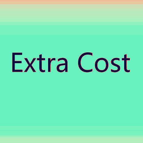 Extra Fee//cost For the Painting or XDB Shipping fee