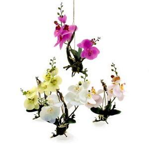 Orchidee an Wurzel, Real Touch Effekt, H 20-30cm, wie echt, künstlich