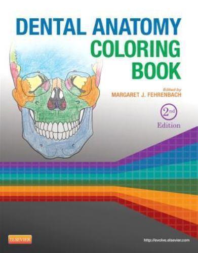 Dental Anatomy Coloring Book 2013 Paperback Ebay
