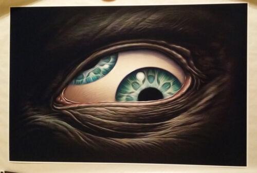 "Tool Band Third Eye 24/"" x 36/"" Aenima Poster Maynard Art Undertow Bar Concert"