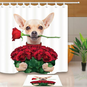 Image Is Loading Chihuahua Dog Holding A Bunch Of Rose Shower