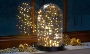 Decorative Bell Jar Light Up Dome Wire