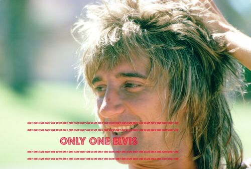 1973 RARE SUPERSTAR Singer ROD STEWART Poolside UP-CLOSE /& UNSEEN 22