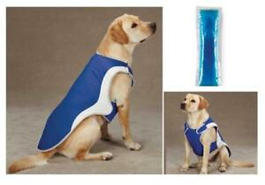 Manteau frais de chiot de chien de compagnie d'engrenage de gardien pour le temps chaud de la chaleur d'été
