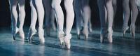 The Nutcracker - Alberta Ballet