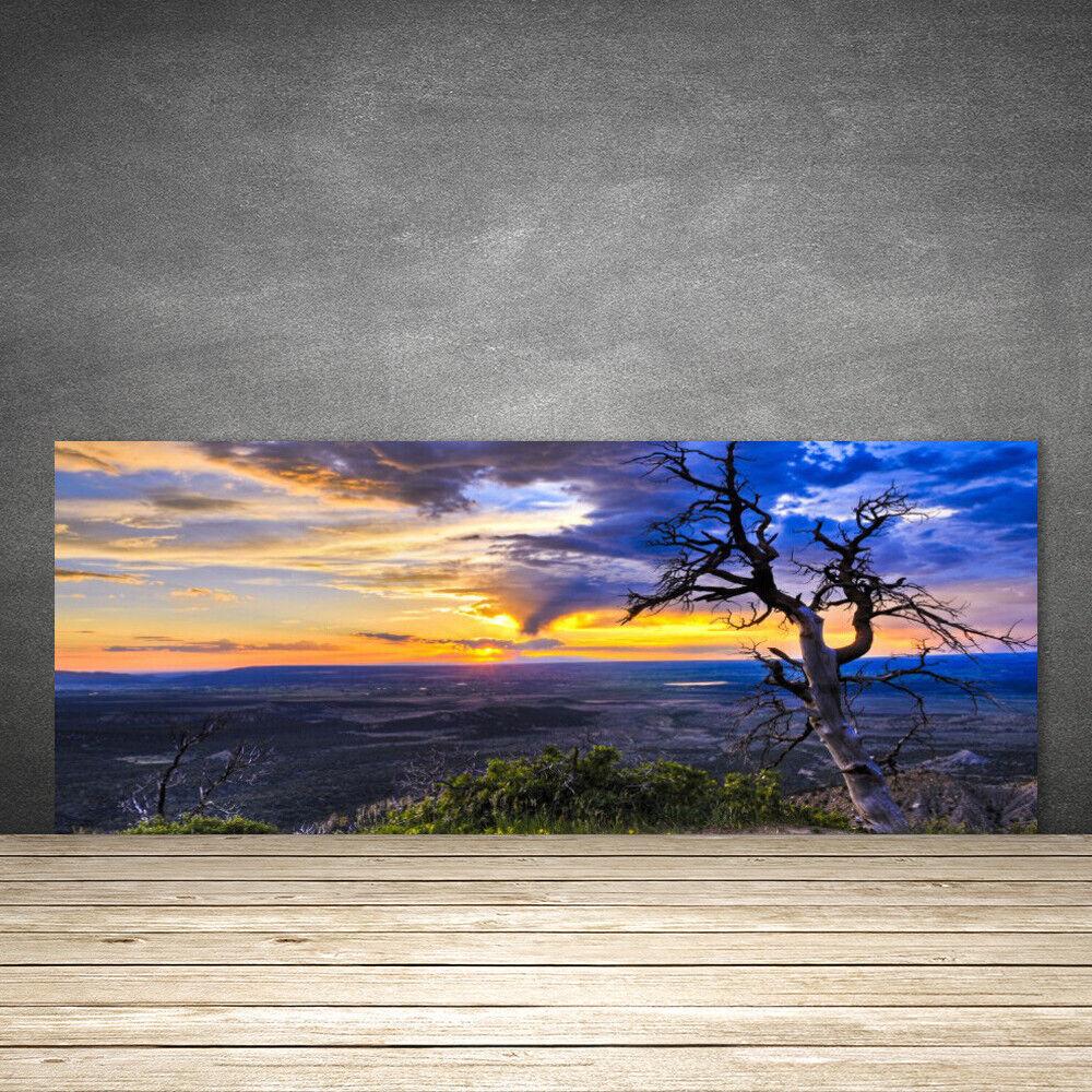 Crédence de cuisine en verre Panneau 125x50 Paysage Arbre