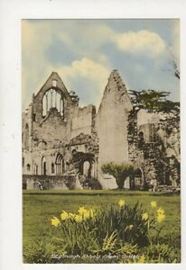 Dryburgh-Abbey-From-South-Vintage-Postcard-925a