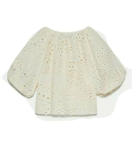 Zara Cotton Embroidered Eyelet Crop Top