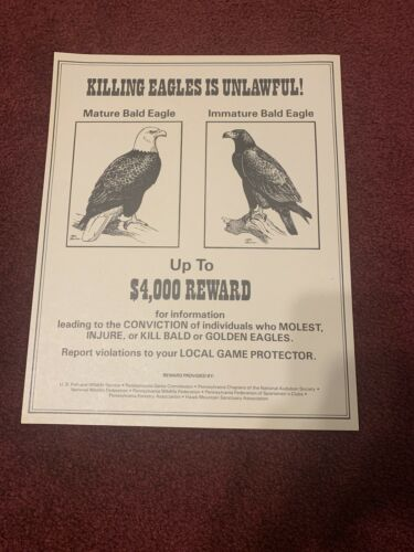 Pa Pennsylvania Game Commission Eagles Poster RARE New Old Stock