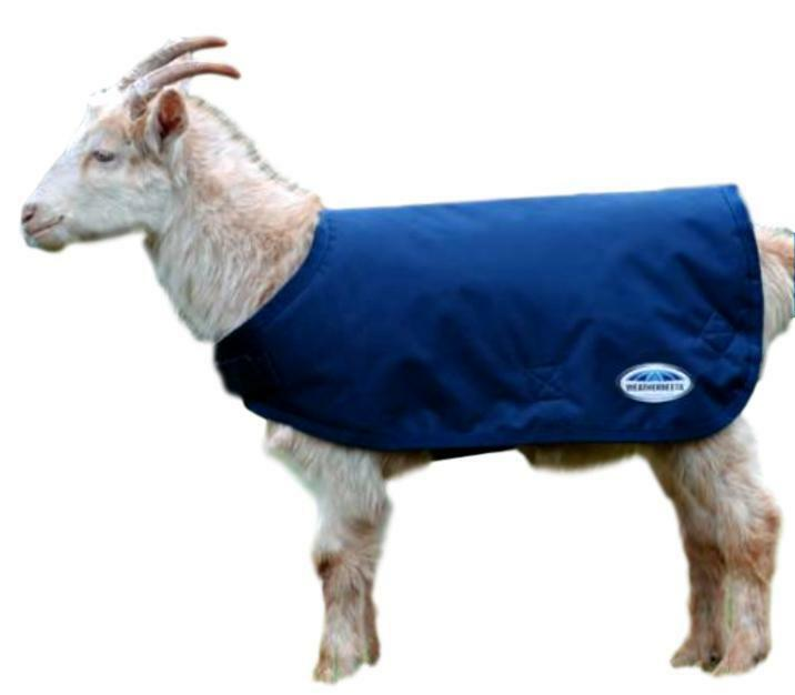 Weatherbeeta Waterproof Goat Coat 100g Fill with Touch Tape Belly Closure