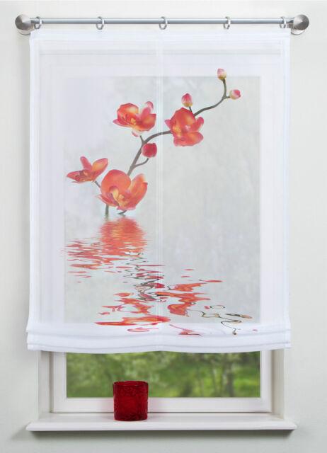 Digitaldruck Raffrollo BxH 80/100/120x140 Rollo Nantes orange transparent Rollo