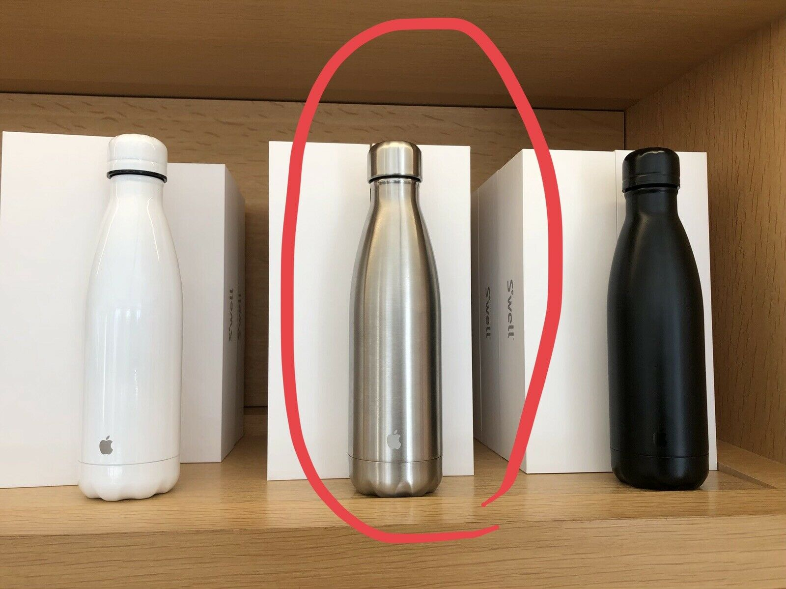 Apple Park Infinity Loop Exclusive Swell Stainless Steel Water Bottle 17 oz New