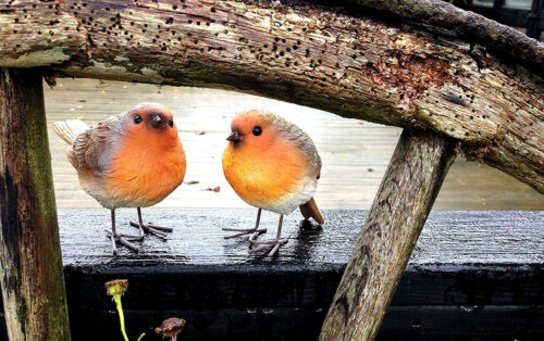 2 Pack Robin Resin Lifelike Bird Statue Garden Patio Pond Ornament Decoration