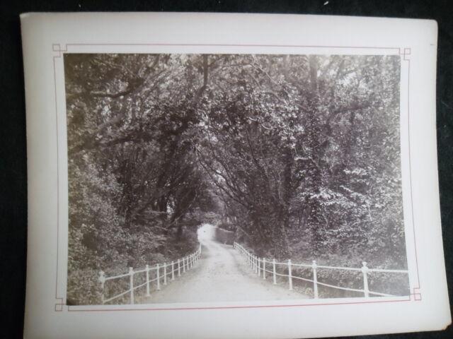 A560 Photographie originale 1888 ile de Jersey Route Rozel ancienne albumen