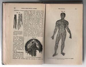 1895-PEOPLE-039-S-COMMON-SENSE-MEDICAL-ADVISER-Health-MEDICINE-Ray-Pierce-MD-Buffalo