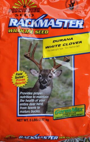 Durana Clover Seed 1 lb.