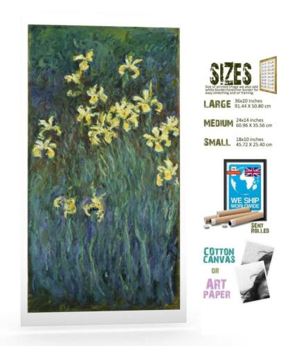 Claude Monet French Impressionist Yellow Irises ART