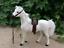 1-6-soldier-model-mount-horse-war-horse-3-colors