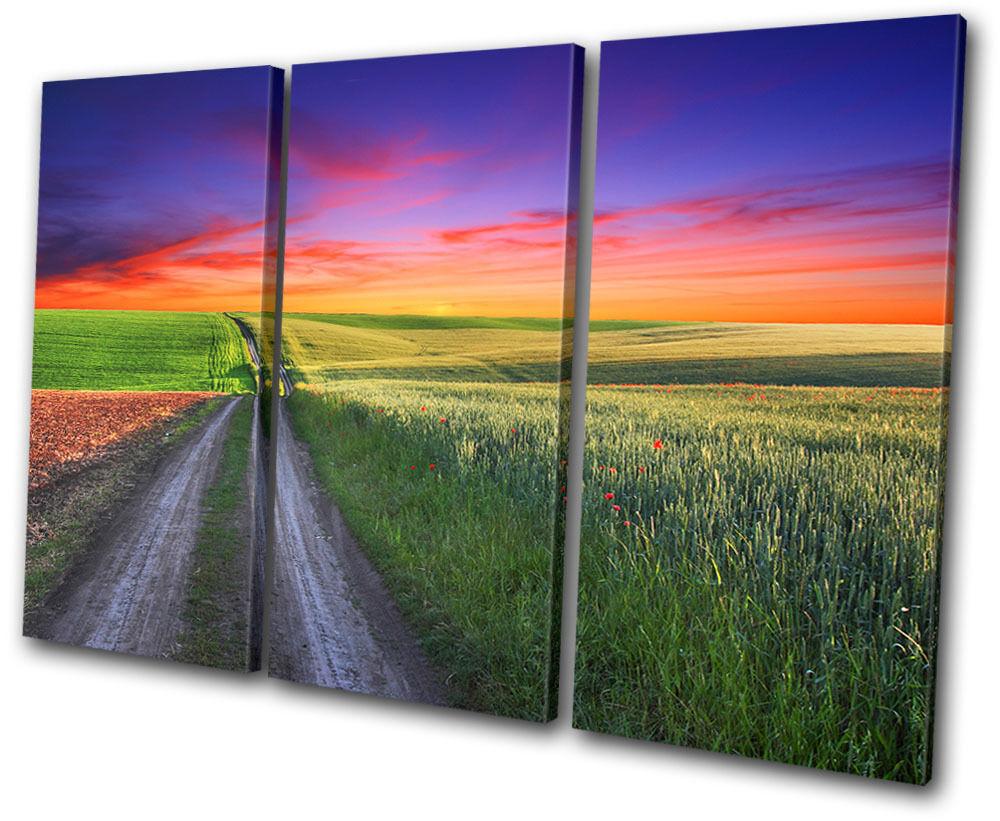 Sunset Seascape road road road Countryside  TREBLE LONA pa rojo  arte Foto impresion 4b3cc2
